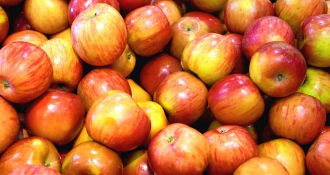variété pommes